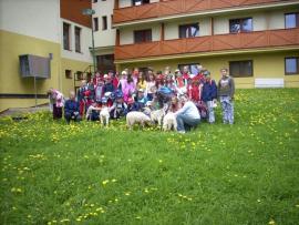 img_penzion_medvedica_1490359303_10.jpg